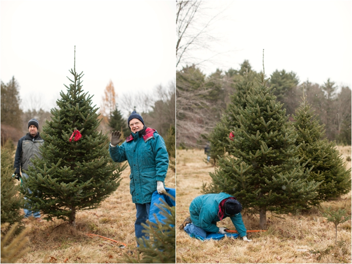 nutter christmas tree farm deborah zoe photography deborah zoe blog boston wedding photographer0009.JPG