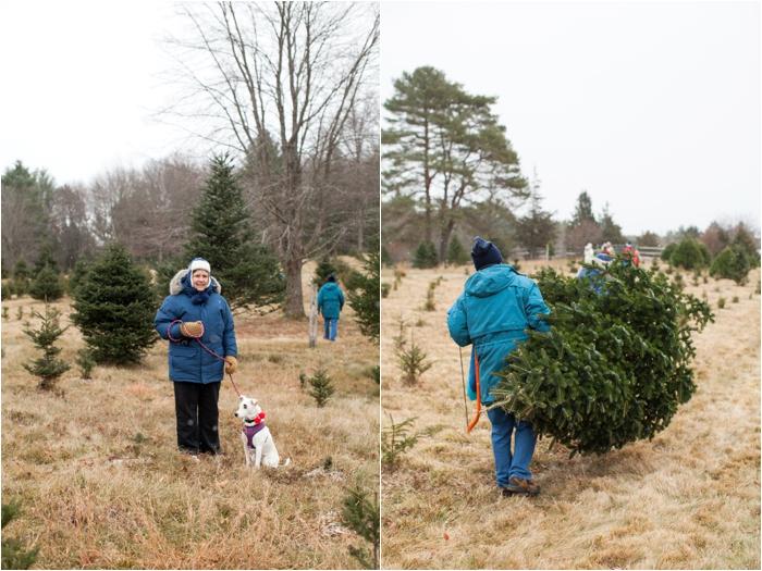 nutter christmas tree farm deborah zoe photography deborah zoe blog boston wedding photographer0013.JPG