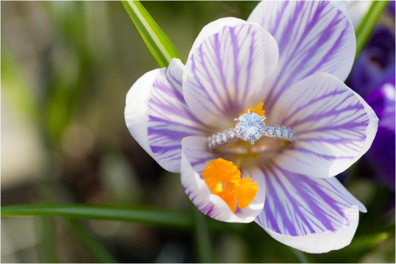 whim events boston engagement session garden bouquet long floral dress0051.JPG