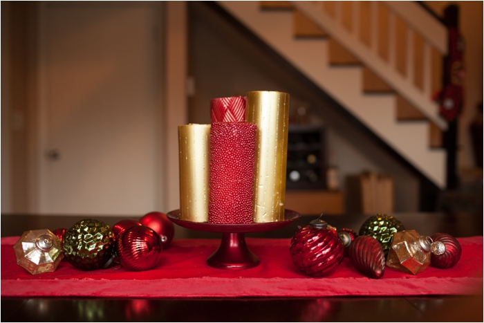 deborah zoe photography christmas decor0002.JPG