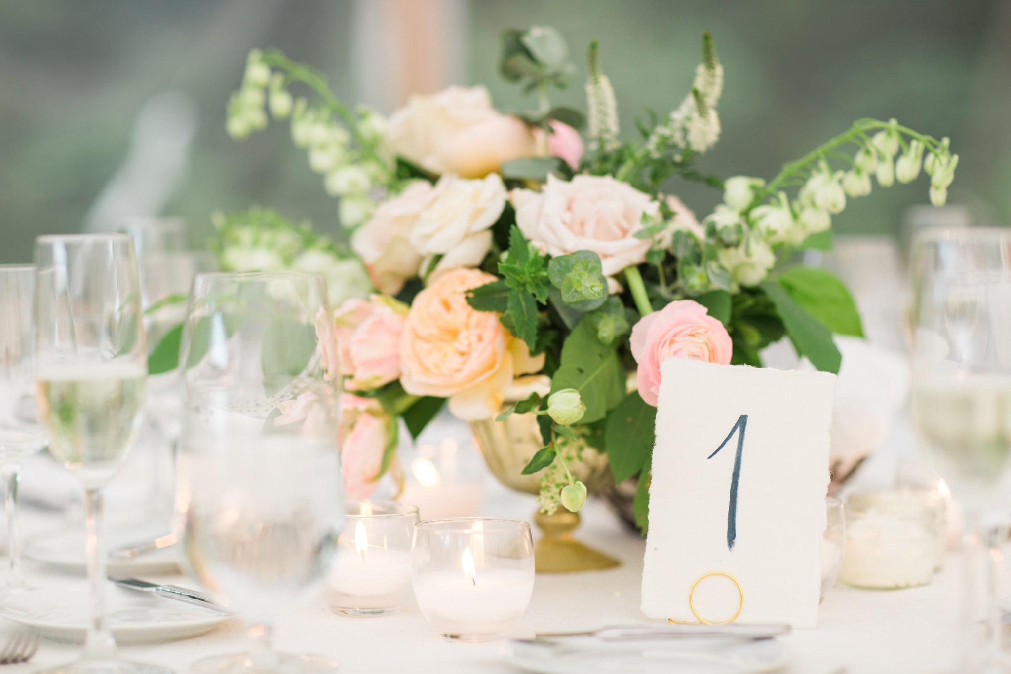 moraine_farm_wedding_deborah_zoe_0054.JPG