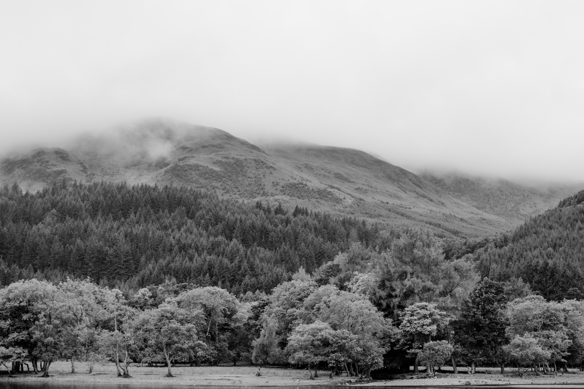 scotland_highlands_deborah_zoe_0029.JPG