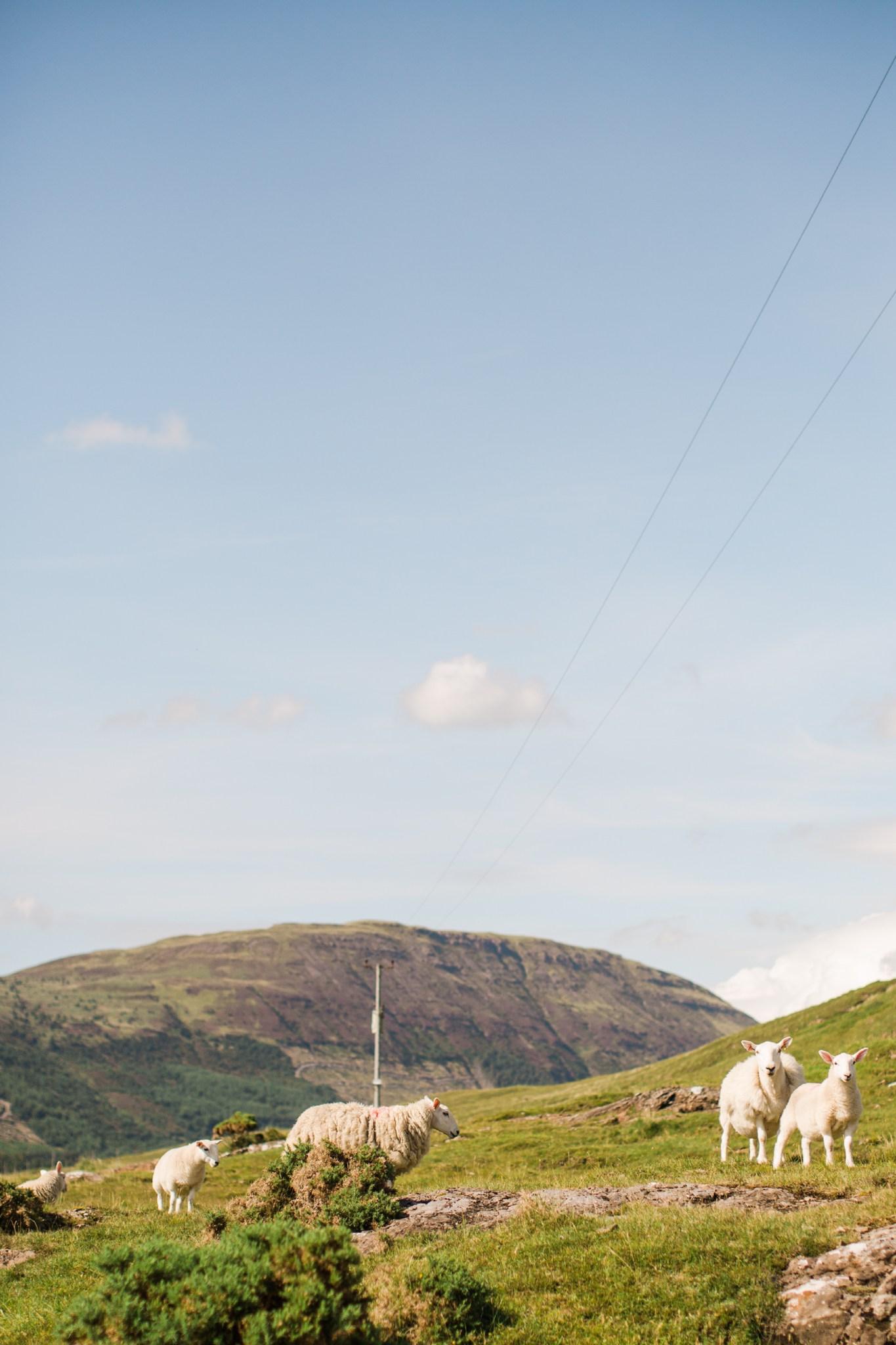 scotland_landscapes_deborah_zoe_photography_00005.JPG