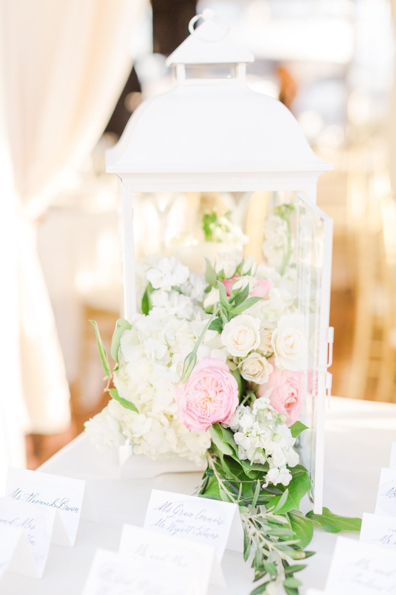 deborah_zoe_photography_best_of_flowers_2016_00016.JPG