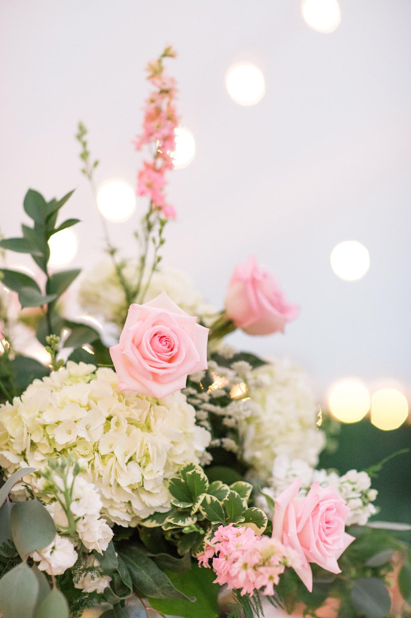 deborah_zoe_photography_best_of_flowers_2016_00033.JPG