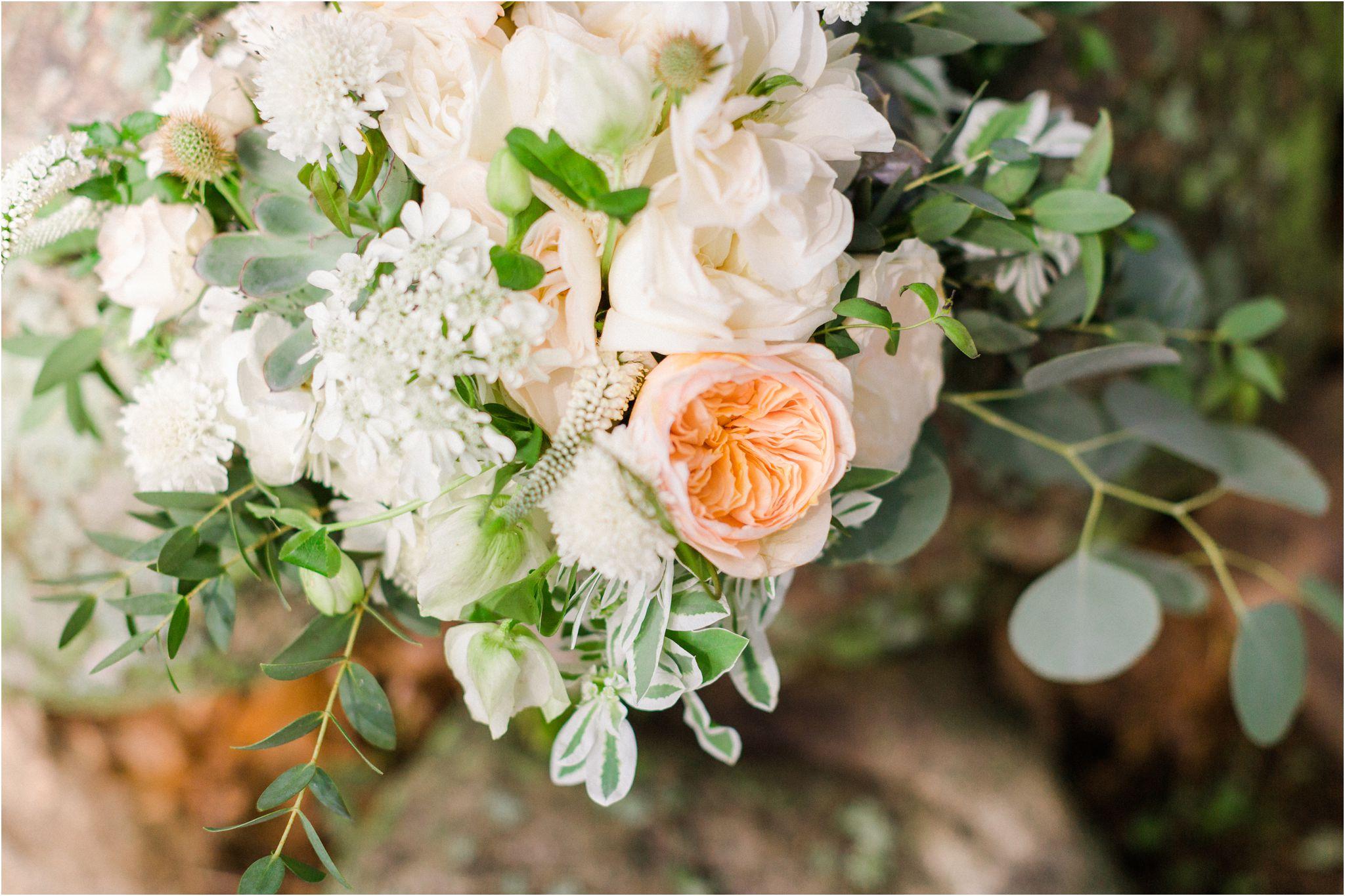 private-estate-wedding-hamilton-photos_00003.JPG