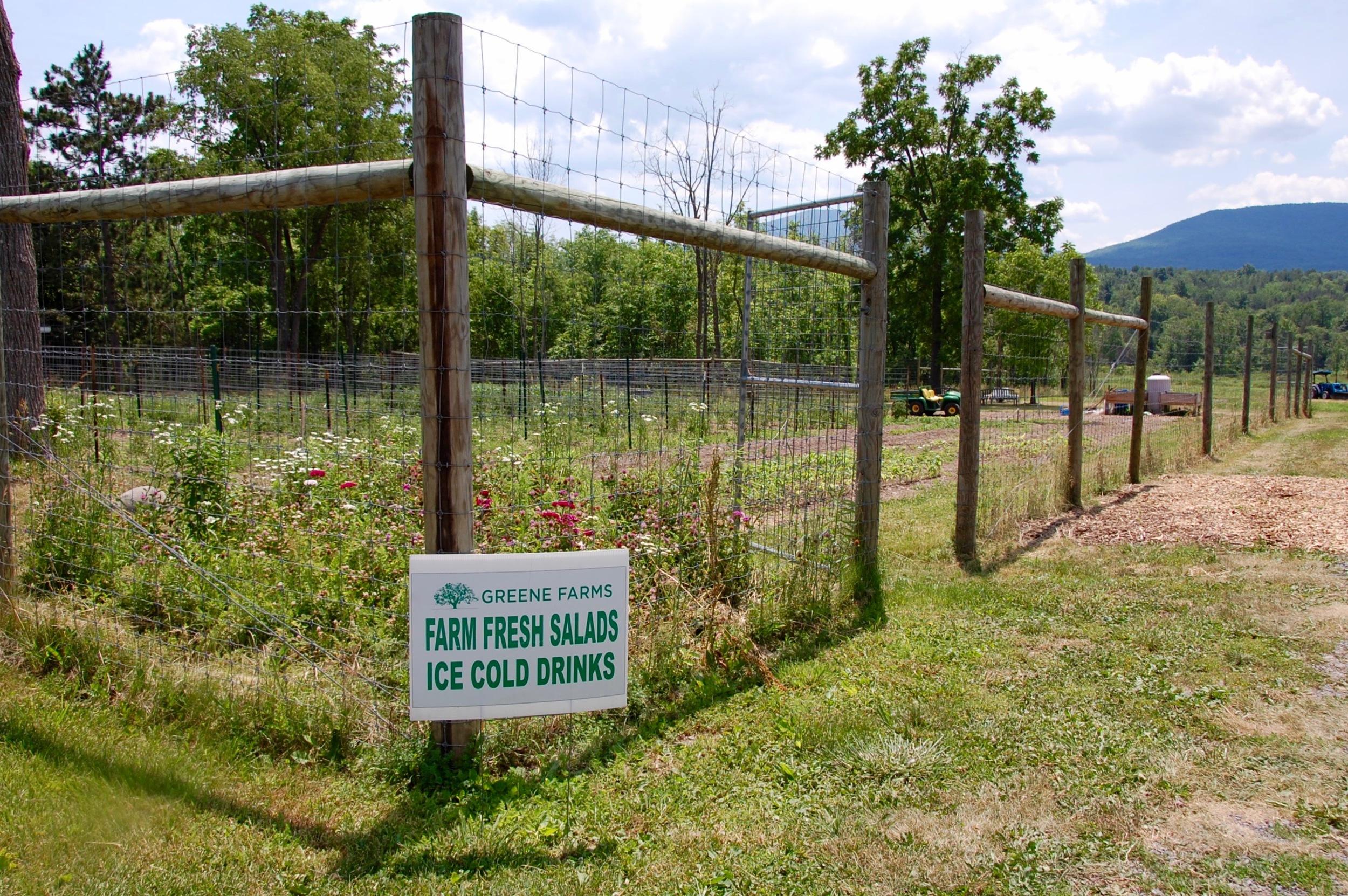 Greene Farms Cornwallville NY