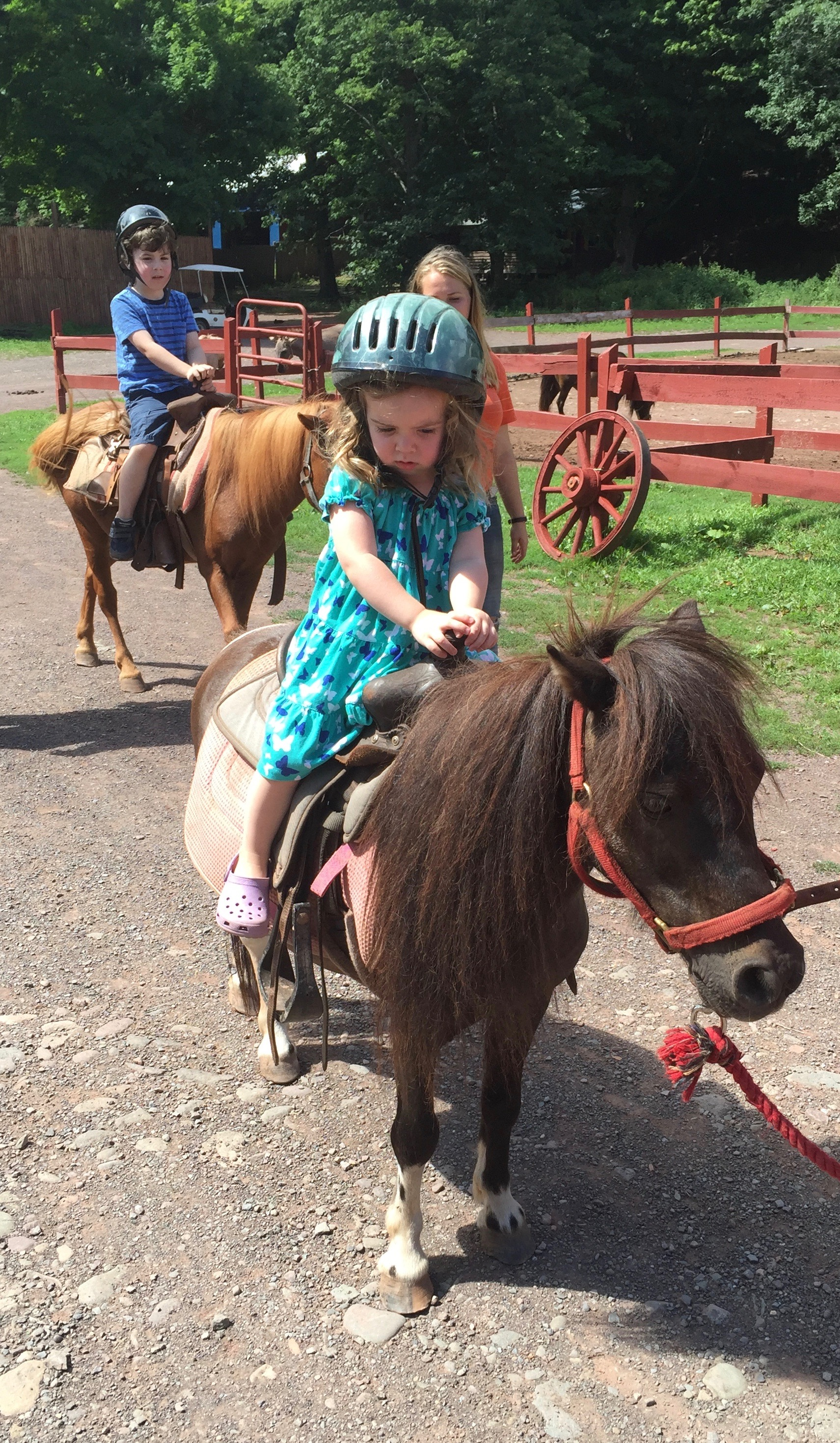 bailiwick ranch pony rides