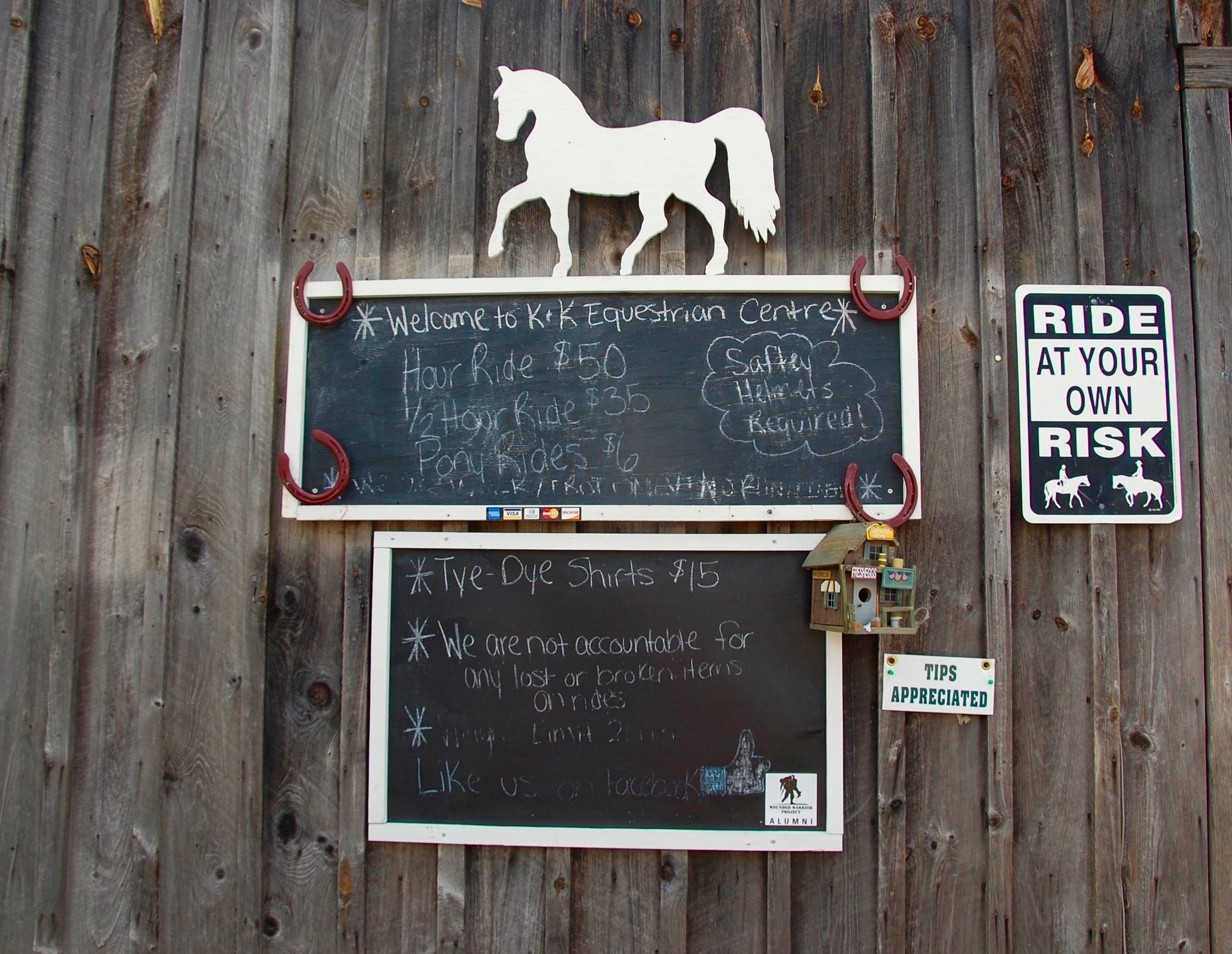 catskills horseback riding