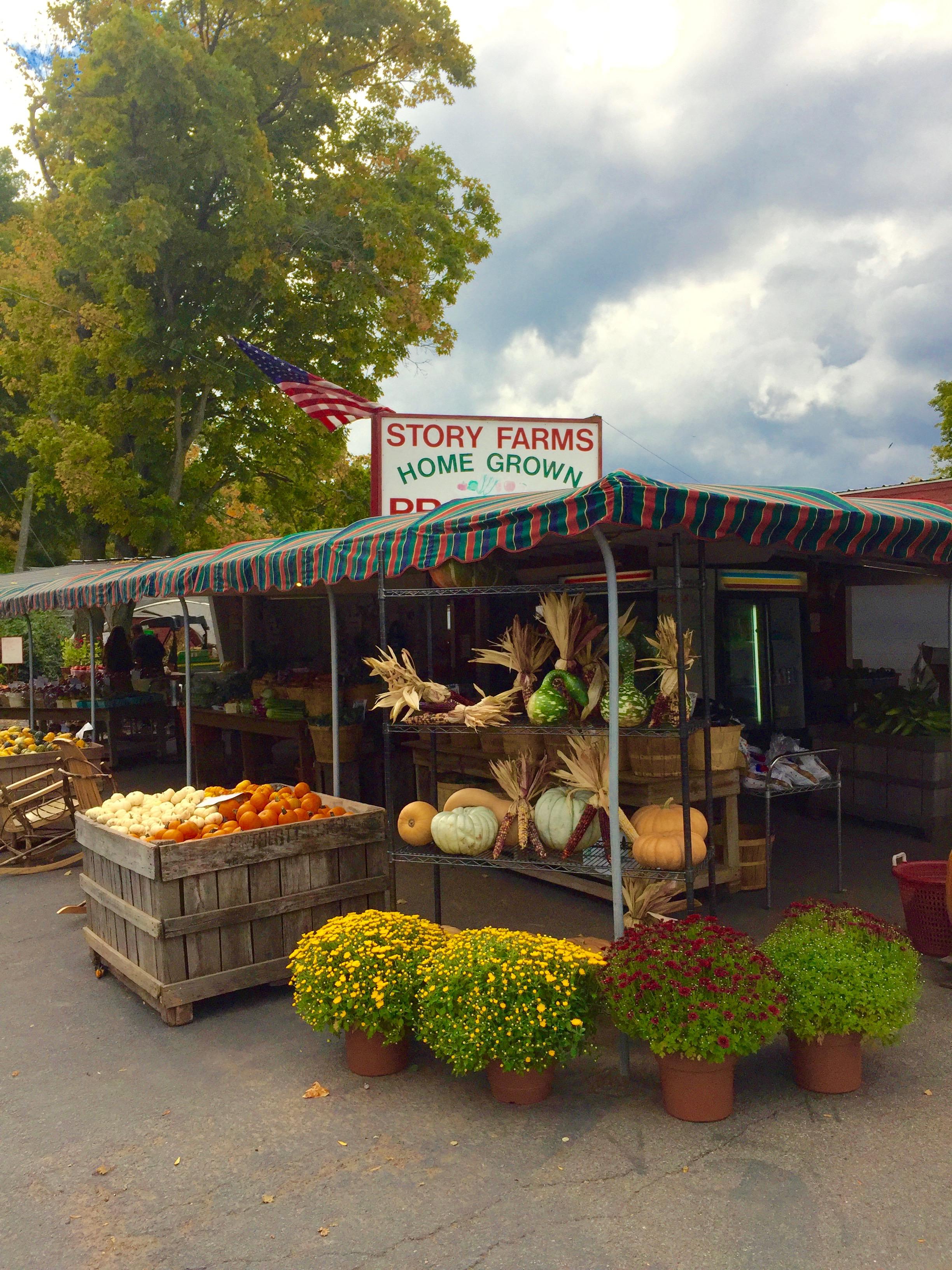 Story Farms farmstand Catskill NY