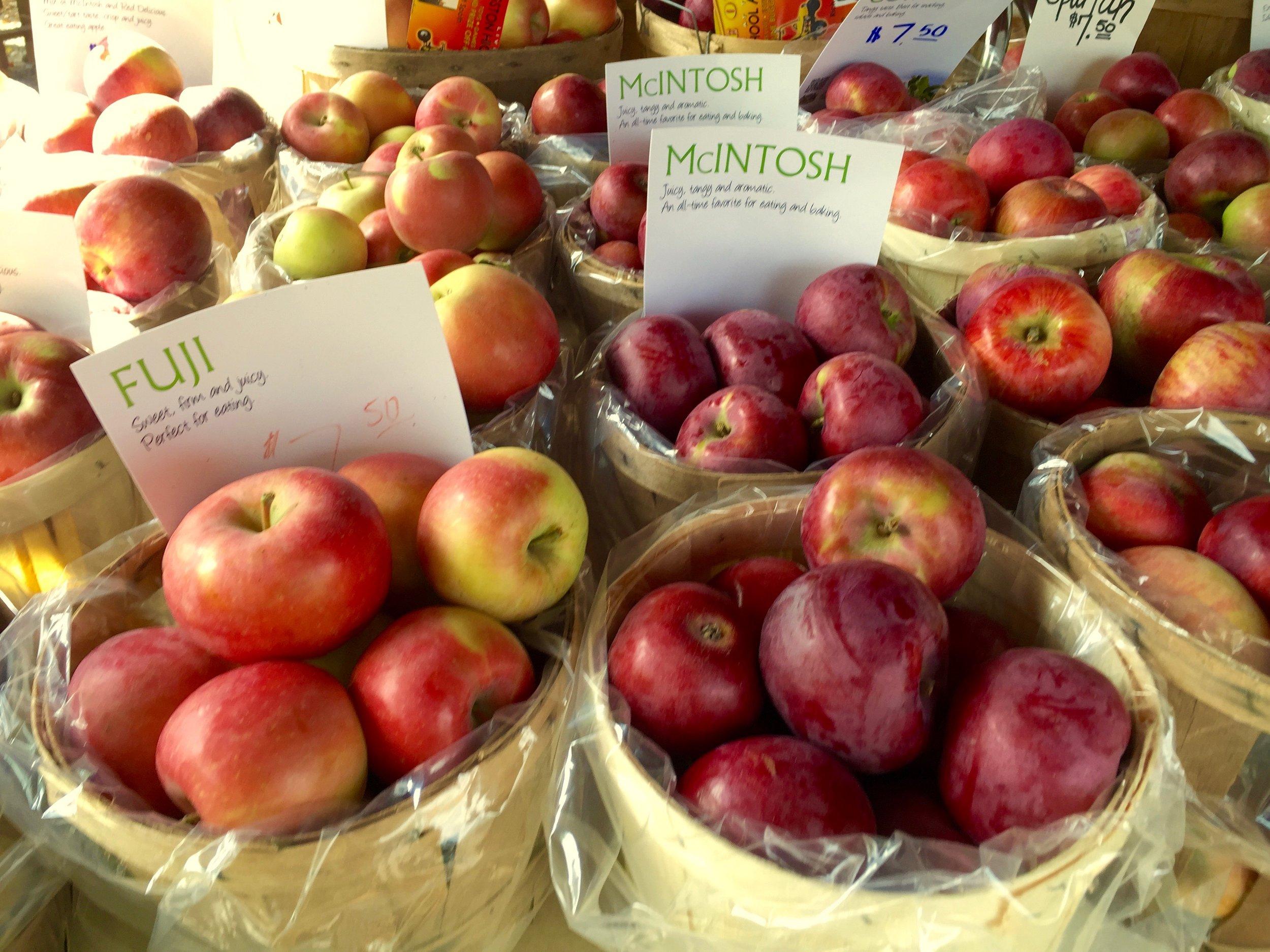 apples catskills