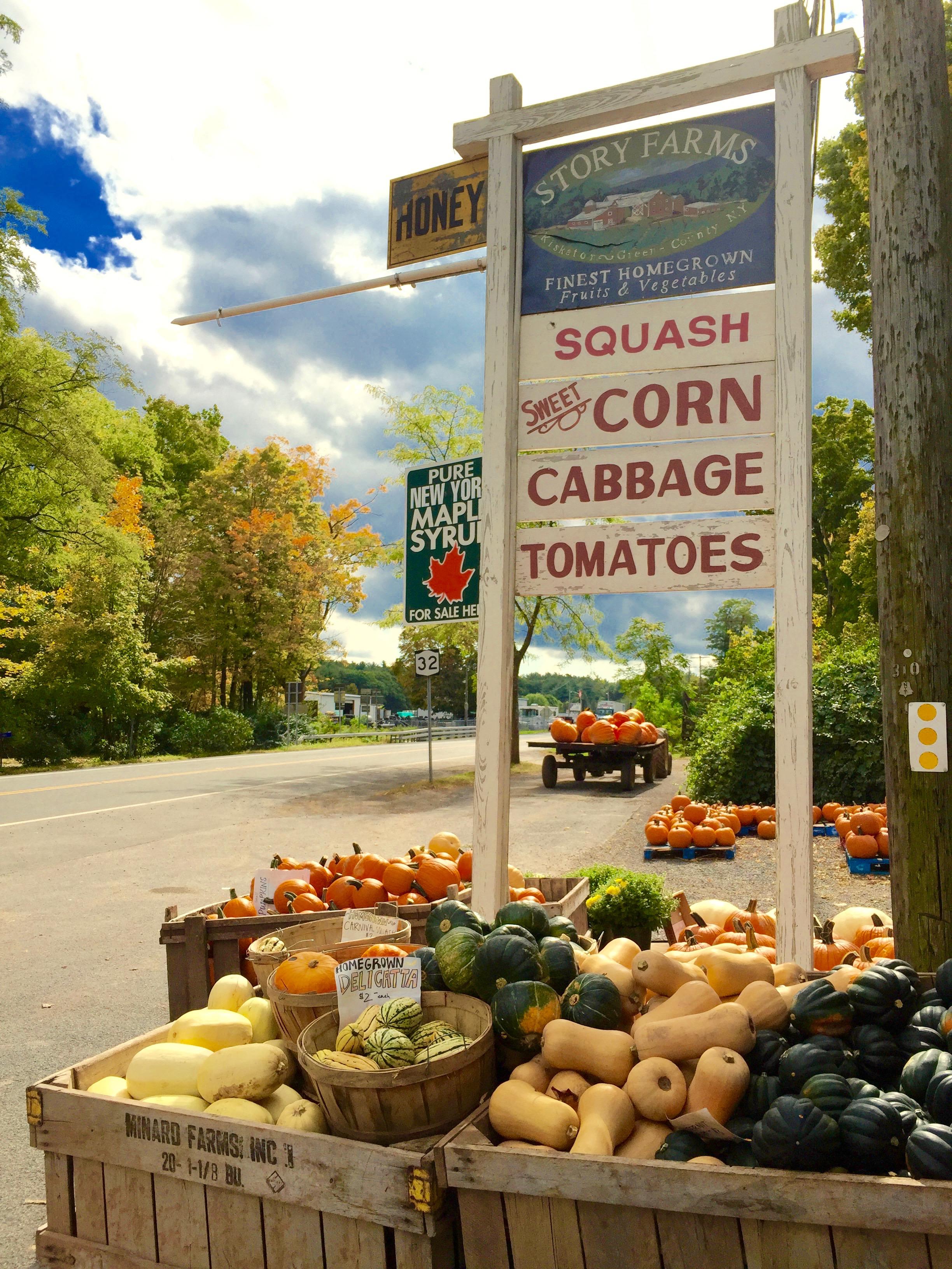 Story Farms  in Catskill, NY