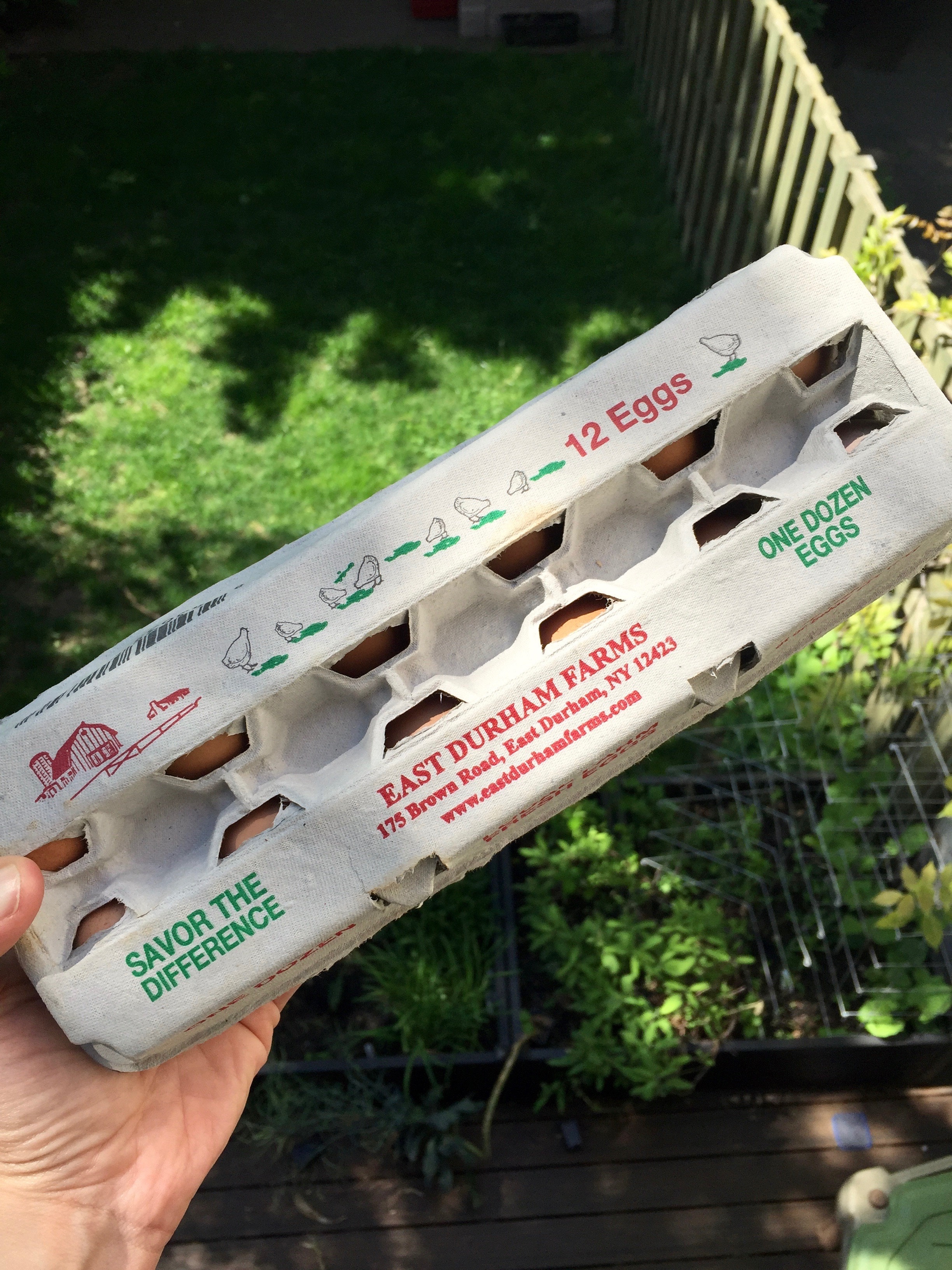 Eggs from East Durham Farms