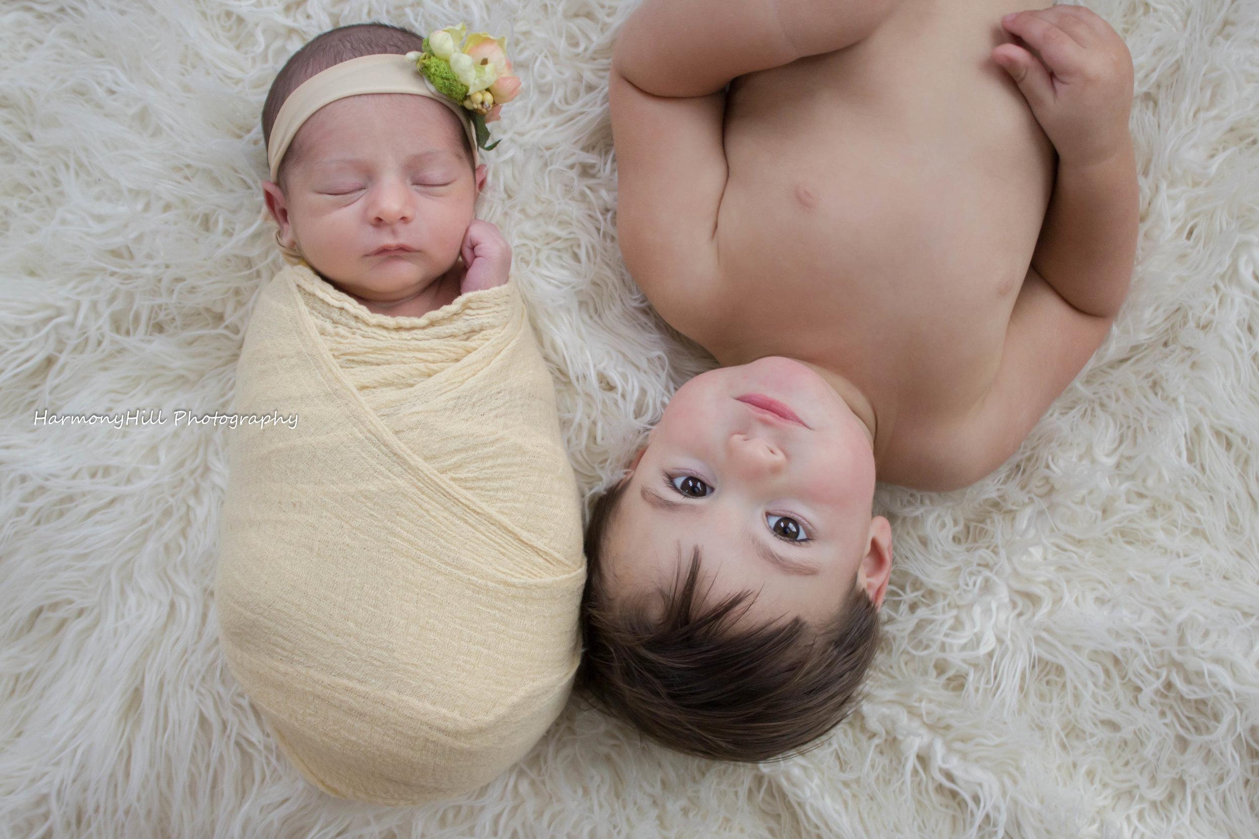 newborn photography catskills harmony hill photography greene county