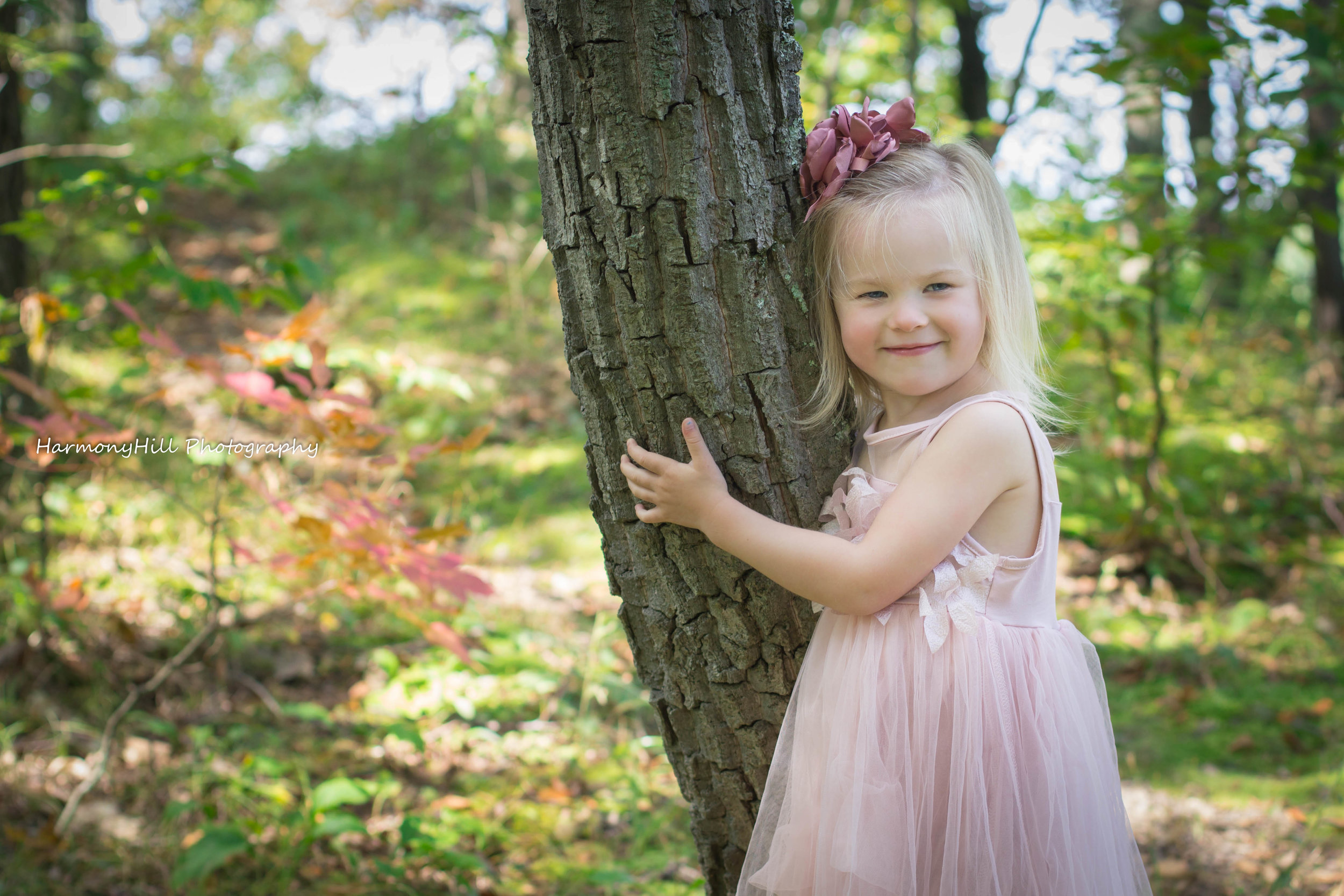 child photographer upstate ny harmony hill by christine mcilhenny