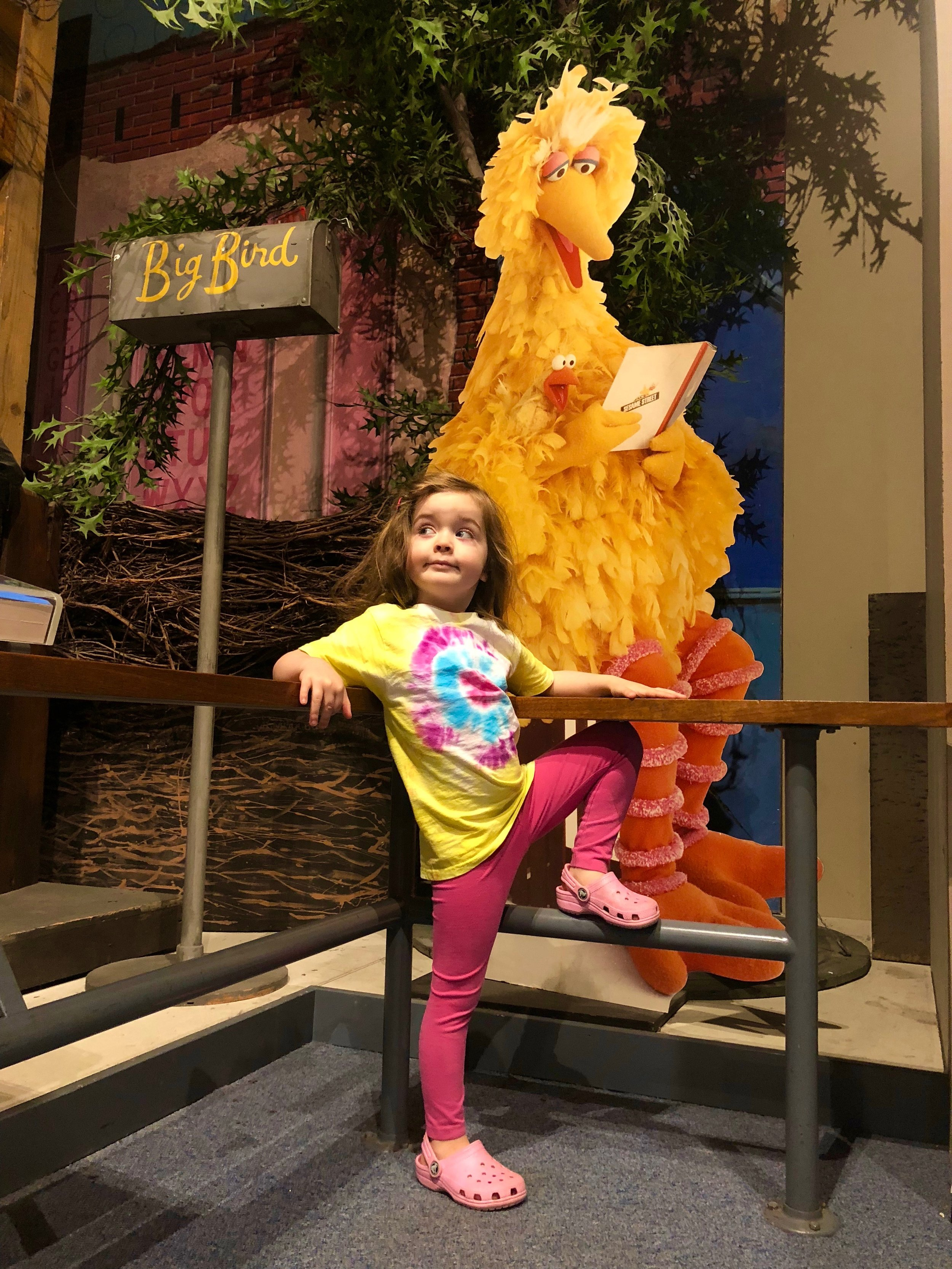 Sesame Street at NYSM