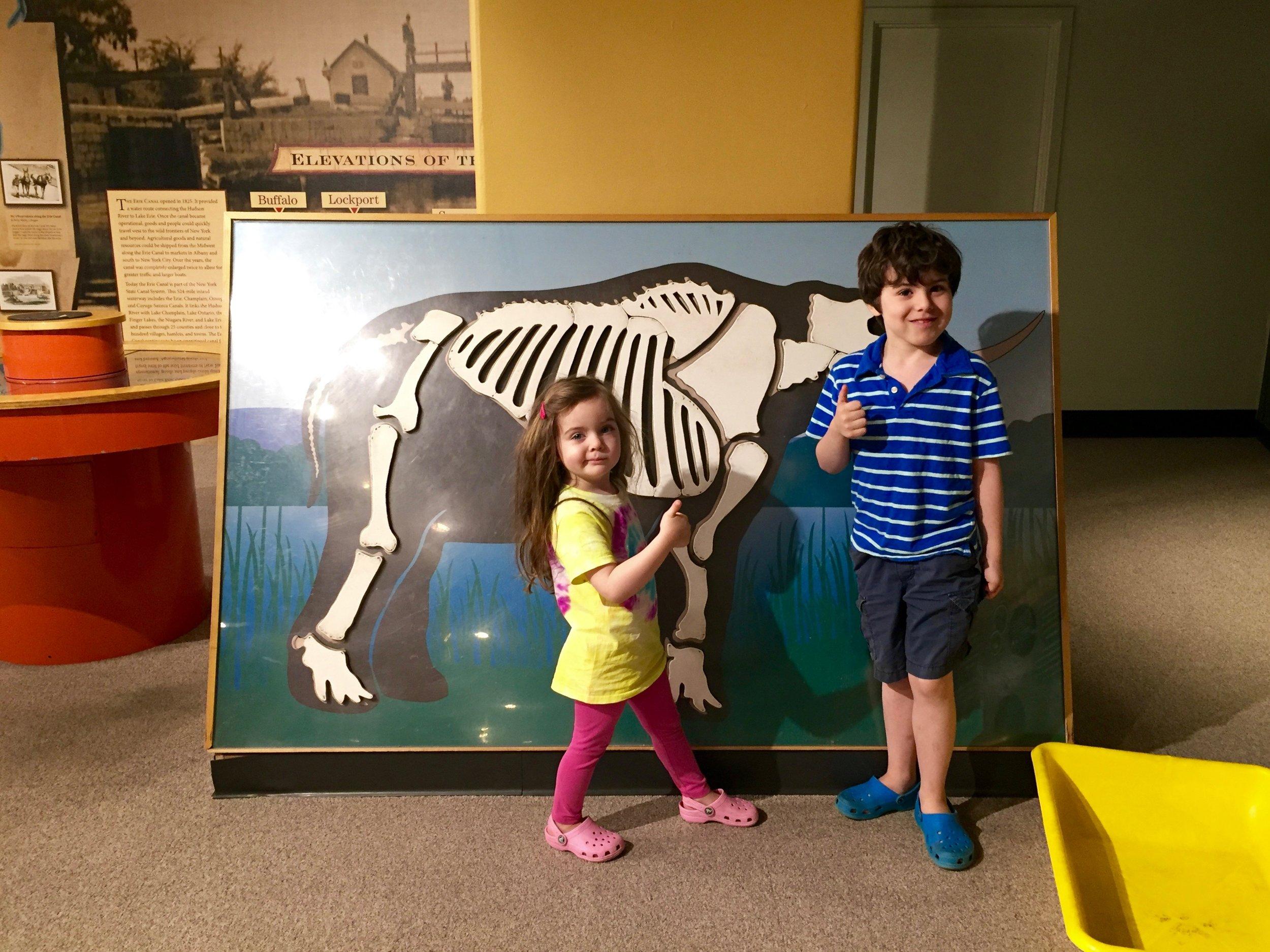 albany childrens museum.jpg
