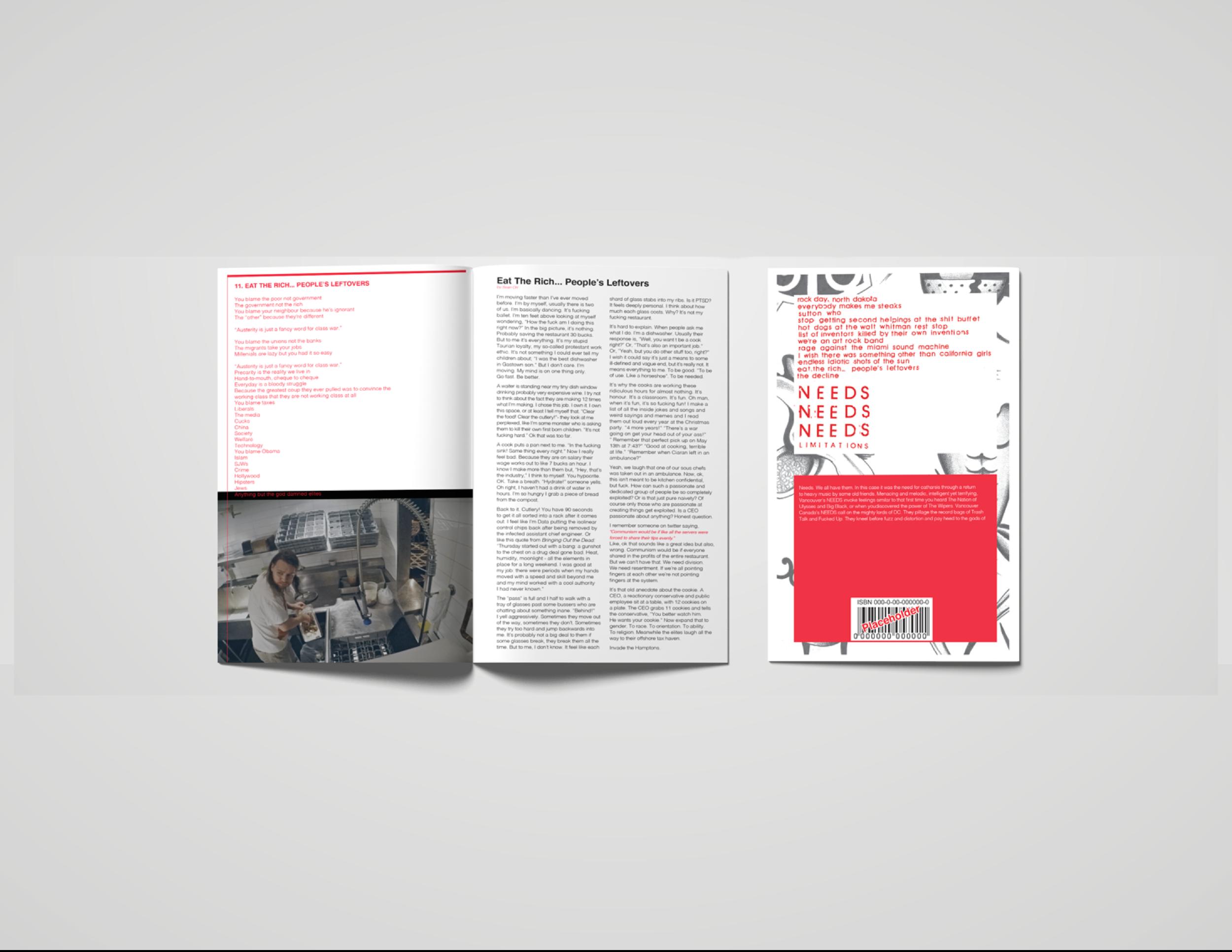 NEEDS_A4_Book_mockup_pres4.png