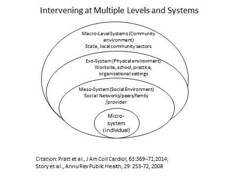 system hierarchy.jpg