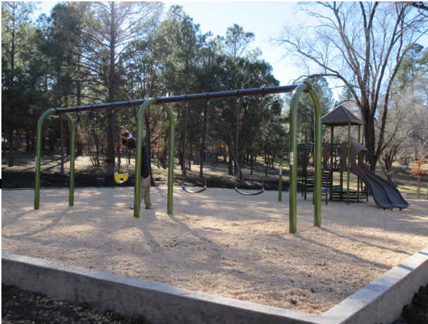 Carsons Corner Playground Wingfield Park.png