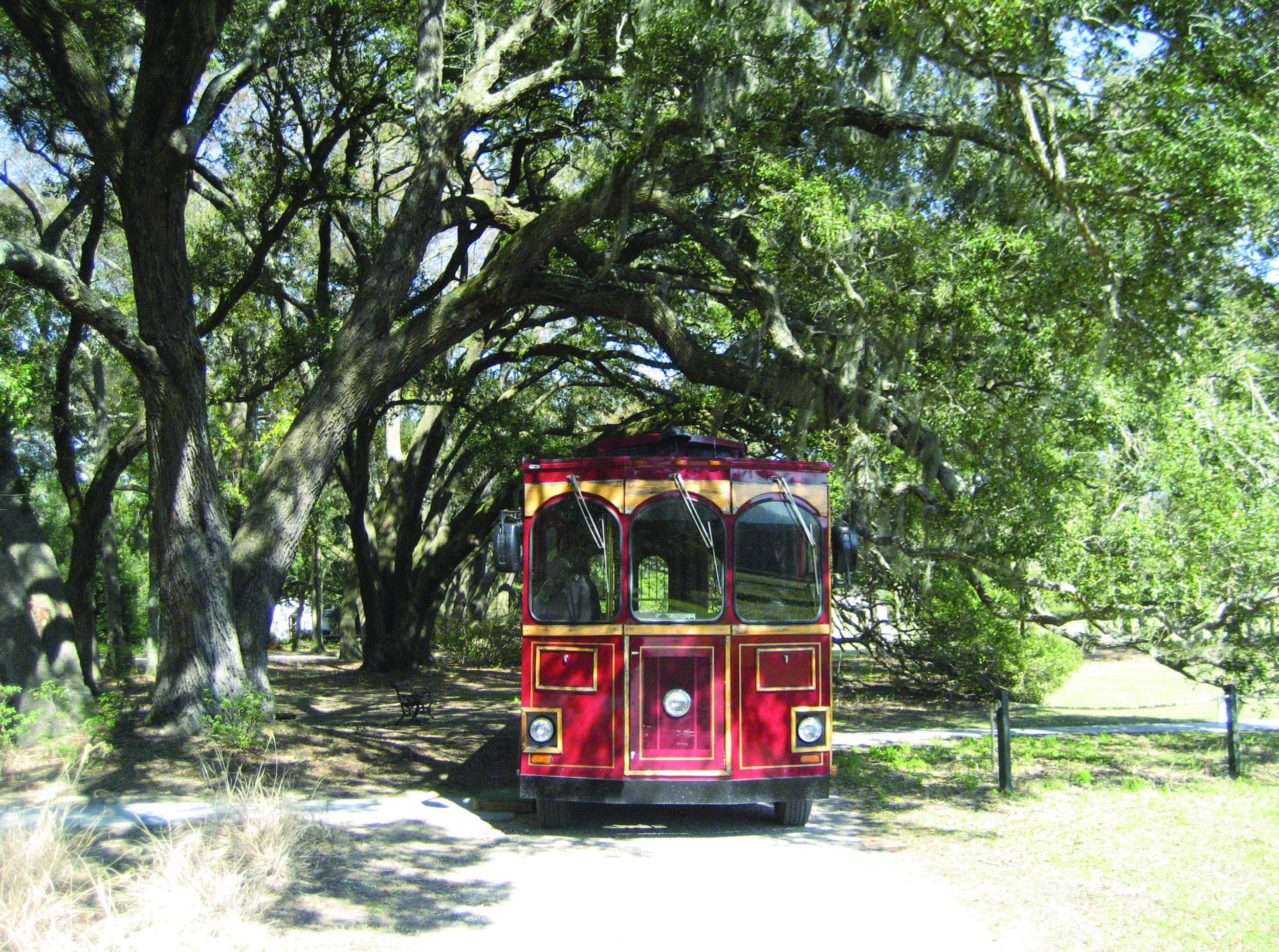 A trolley parked under the oak trees