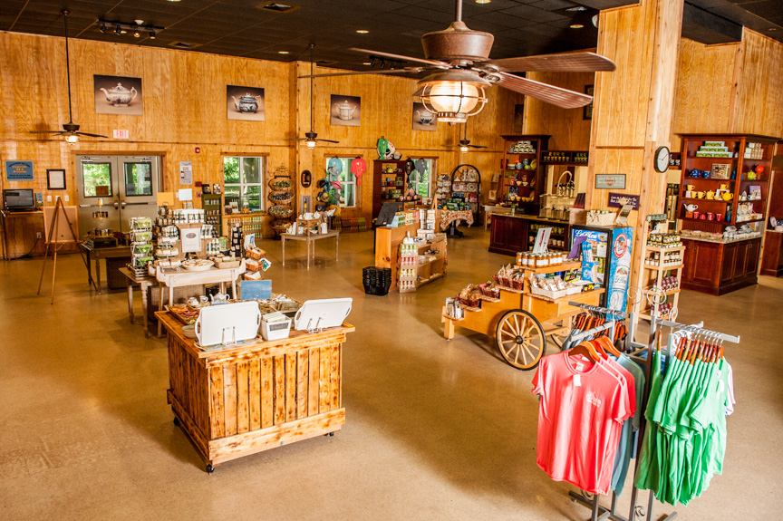 View from the Rear of the Gift Shop