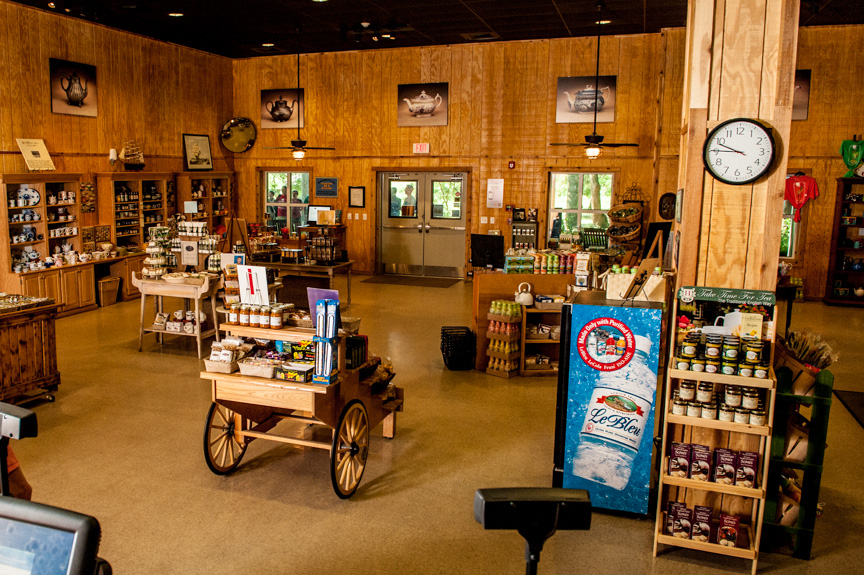 Another view from the rear of the Gift Shop