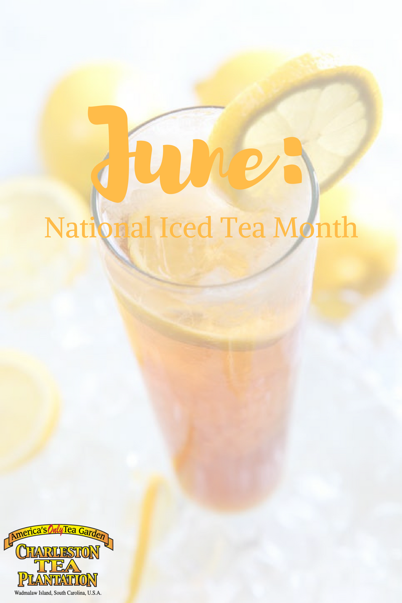 national iced tea month charleston tea plantation
