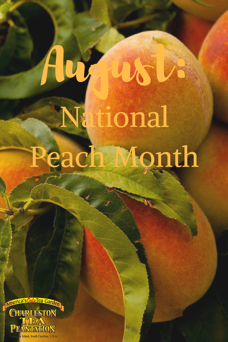 August National Peach Month Charleston Tea Plantation