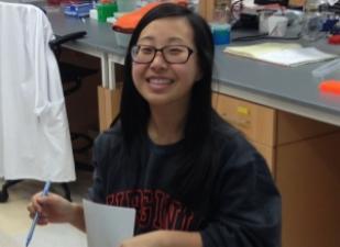 Rachel Park, 2012-2016