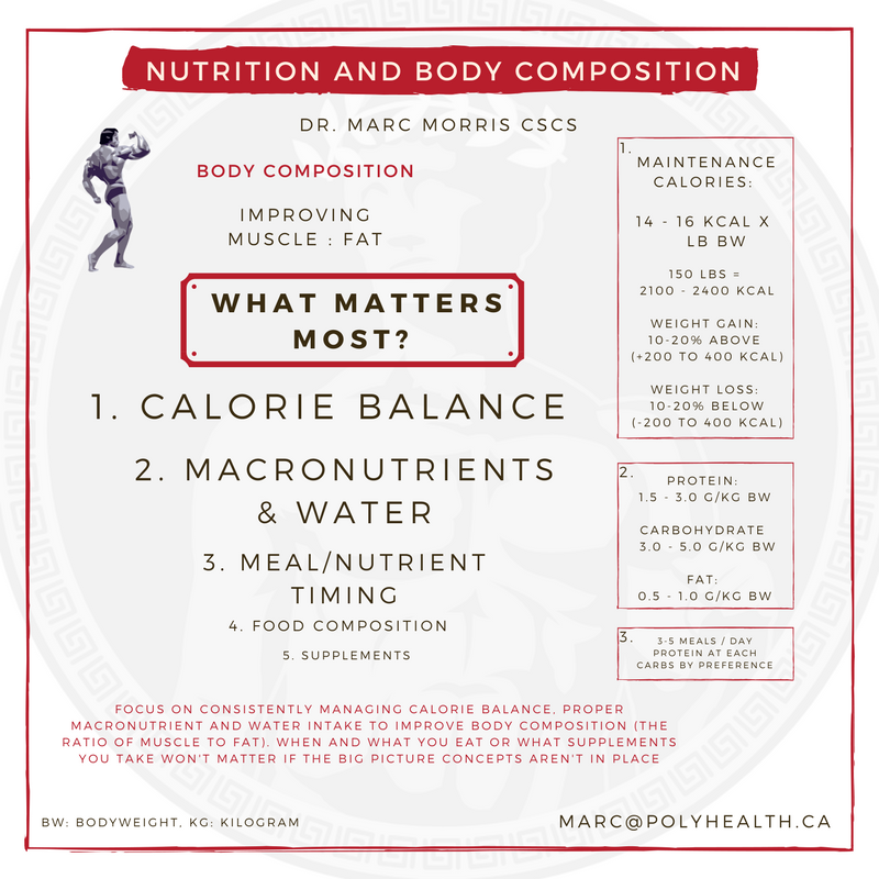 nutrition and body composition.png
