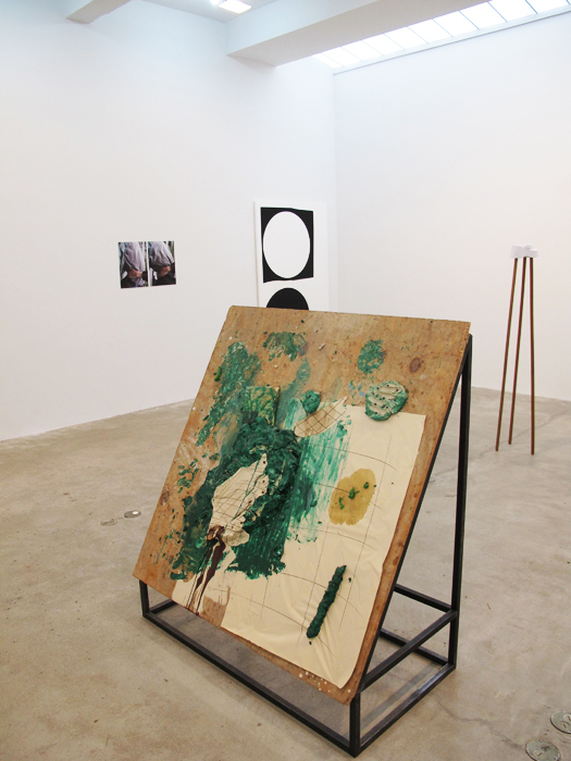 Installation view, Some Facts About Manhattan , STL, NY, 2012