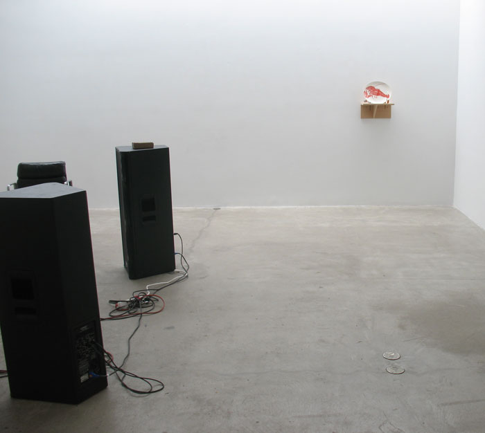 Installation view,  Shoot The Lobster Recordings , STL, NY, 2012