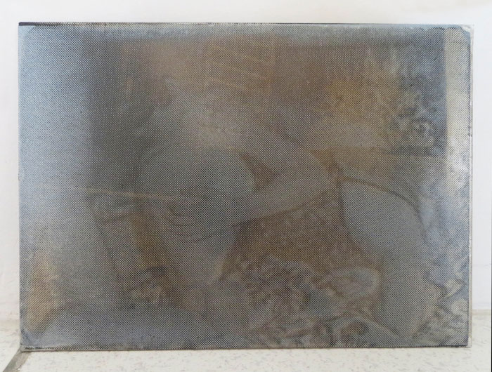 Servane Mary, Small Plate #9 , 2012,silkscreen on photographic plate,4 x 5 in