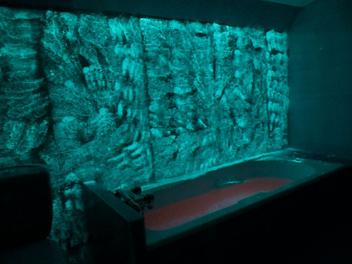 Servane Mary, Untitled (The Green Room), 2012,Ultra Blue Glow-in-the-Dark powder, egg, pink flourescent ink,dimensions variable