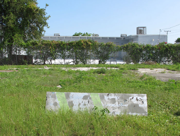 Installation view, Davina Semo ,Miami, 2012