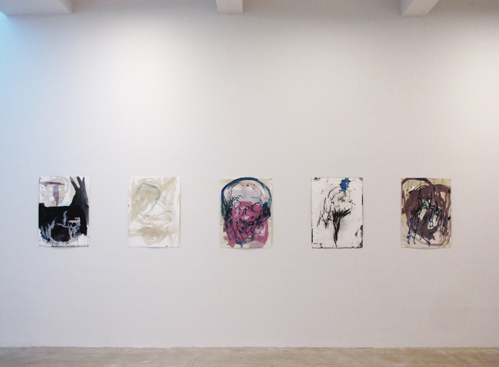Installation view,  Christopher Amel , STL, NY, 2013