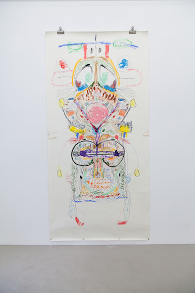 Ross Simonini,  Getting in touch with my Parasympathetic  Nervous System, 2013, acrylic, pencil, ink, crayon, and colored pencil on paper, 82 x 42 in