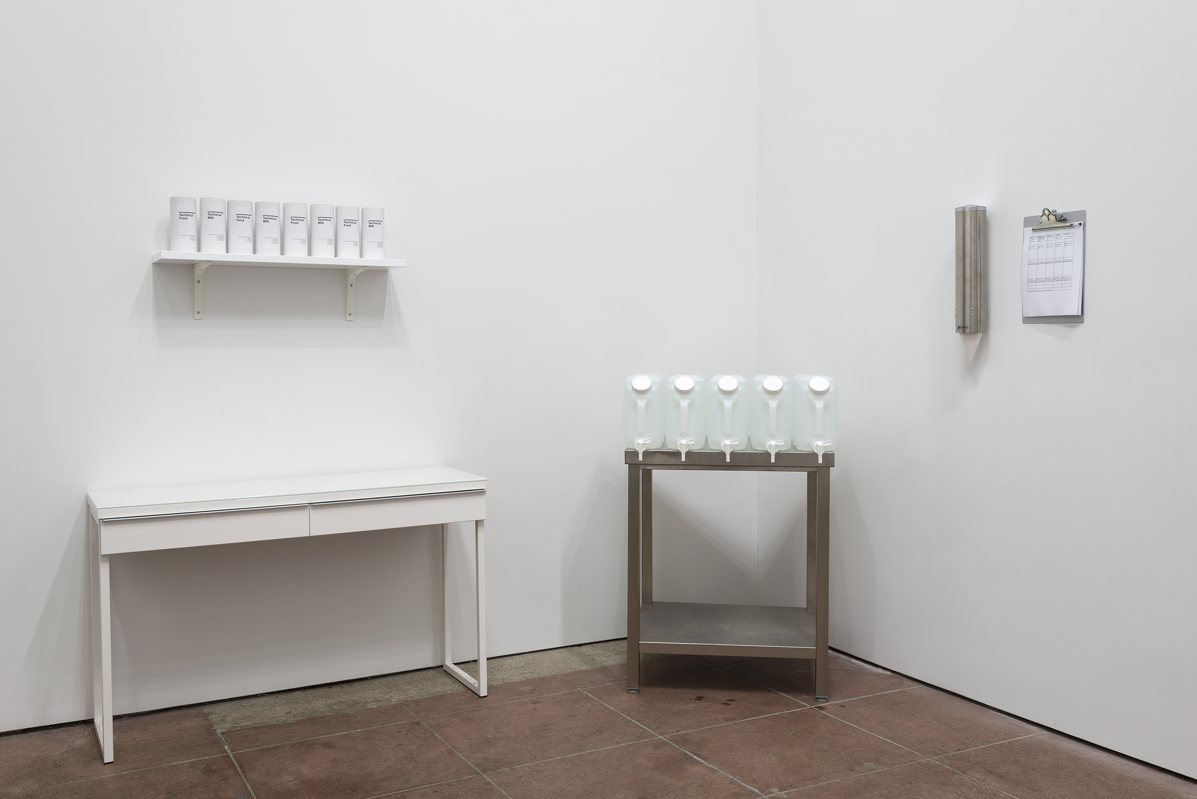 Installation view, In the Flesh Part l: Subliminal Substances , Martos Gallery, Los Angeles, 2015