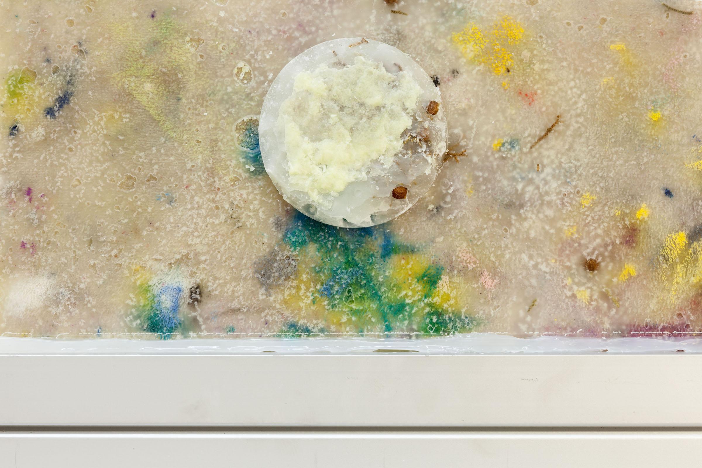 Natalie Labriola, Pharmakon I  (deatil), 2016,juniper berries and painted rag cast in paraffin wax, silicone caulk, aluminum hardware,15 x 24.25 x 4 in