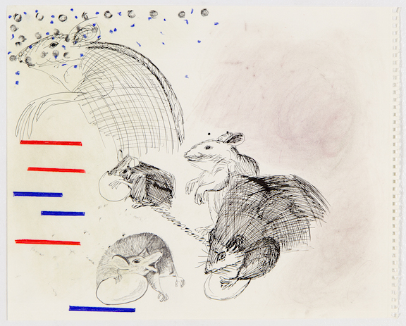 Sofi Brazzeal,  Untitled (rats with eggs) , 2016, pencil, color pencil and ink on paper, 14 x 17 in