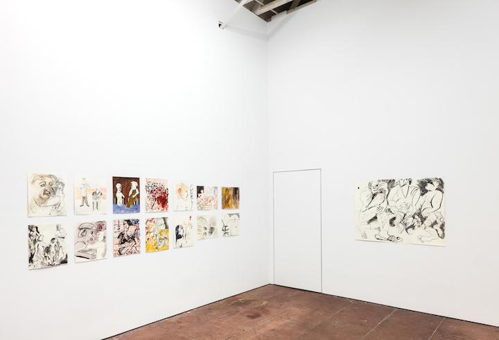 Installation view, hi rude camel,, STL, LA, 2017