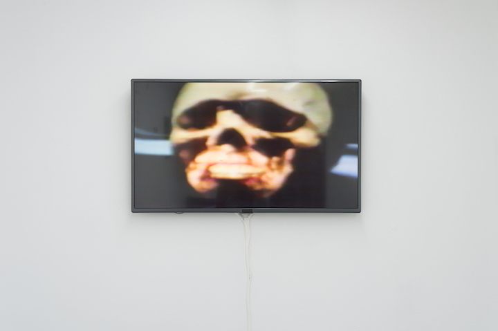 Julia Heyward,  Bay of Pig , 1982, color video, 4 min