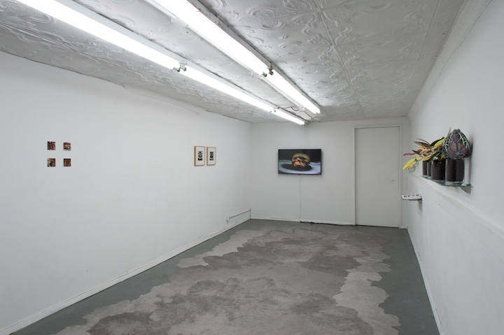 Installation view,  To A Body , STL, NY, 2017