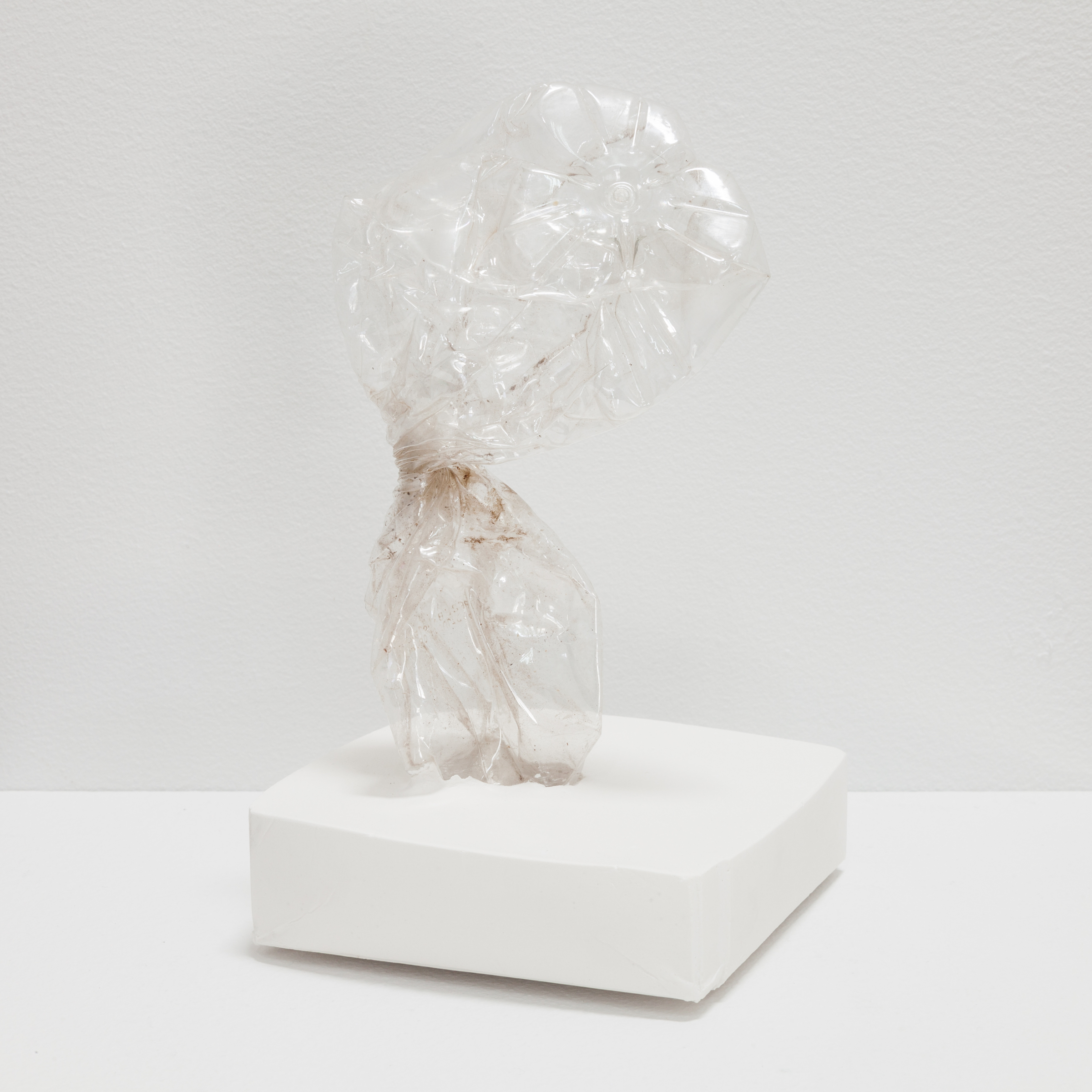 Deborah Hede,  Plastic Bottle, twisted , 2013, plastic water bottle, plaster, 5 × 4 × 4 in