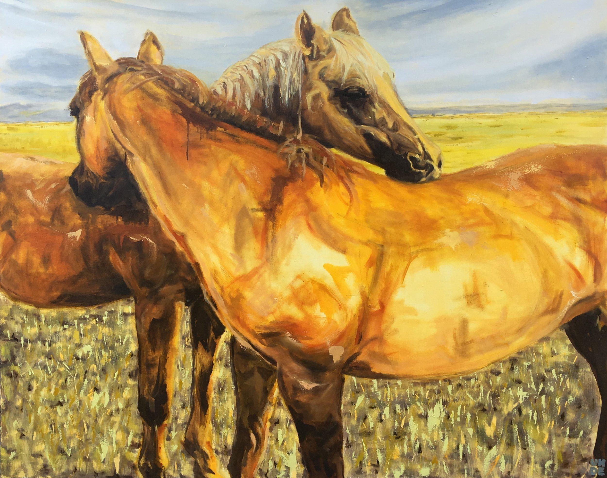 ALL.the.PRETTY.horses