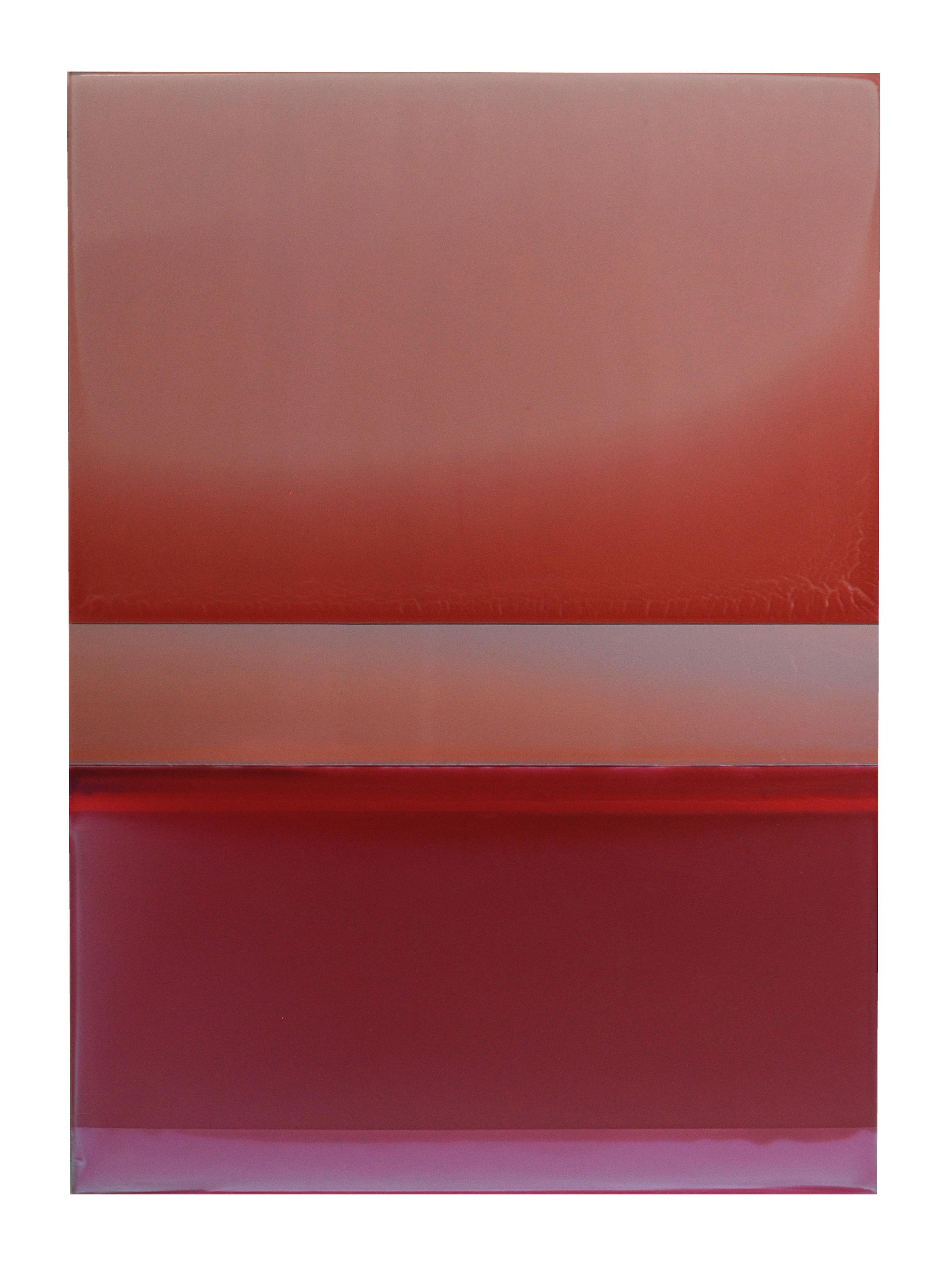 NYFA10_Kermes and Cochineal_2017_33x24_tinted polymer on panel.jpeg