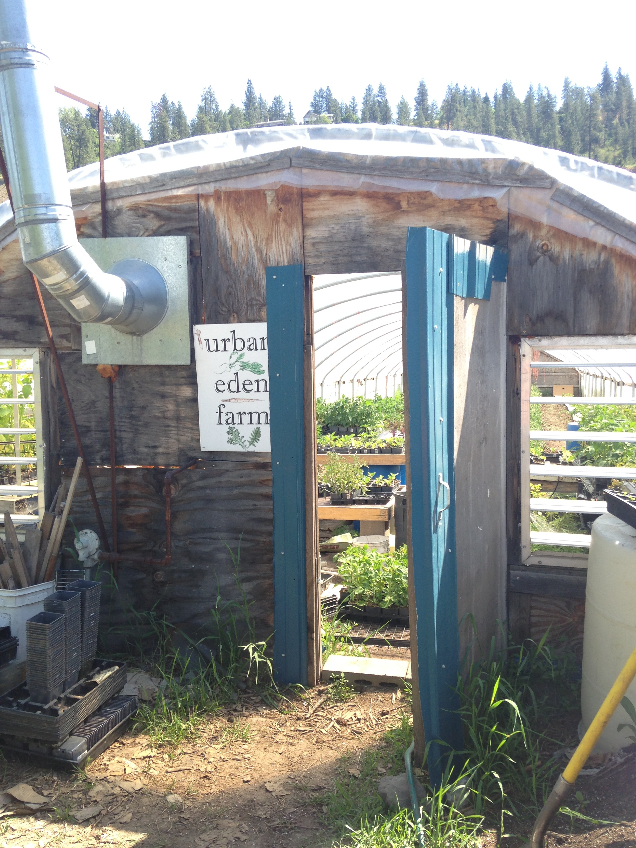Hoop Houses are so great for starting vegetables in our cold Spokane springs!
