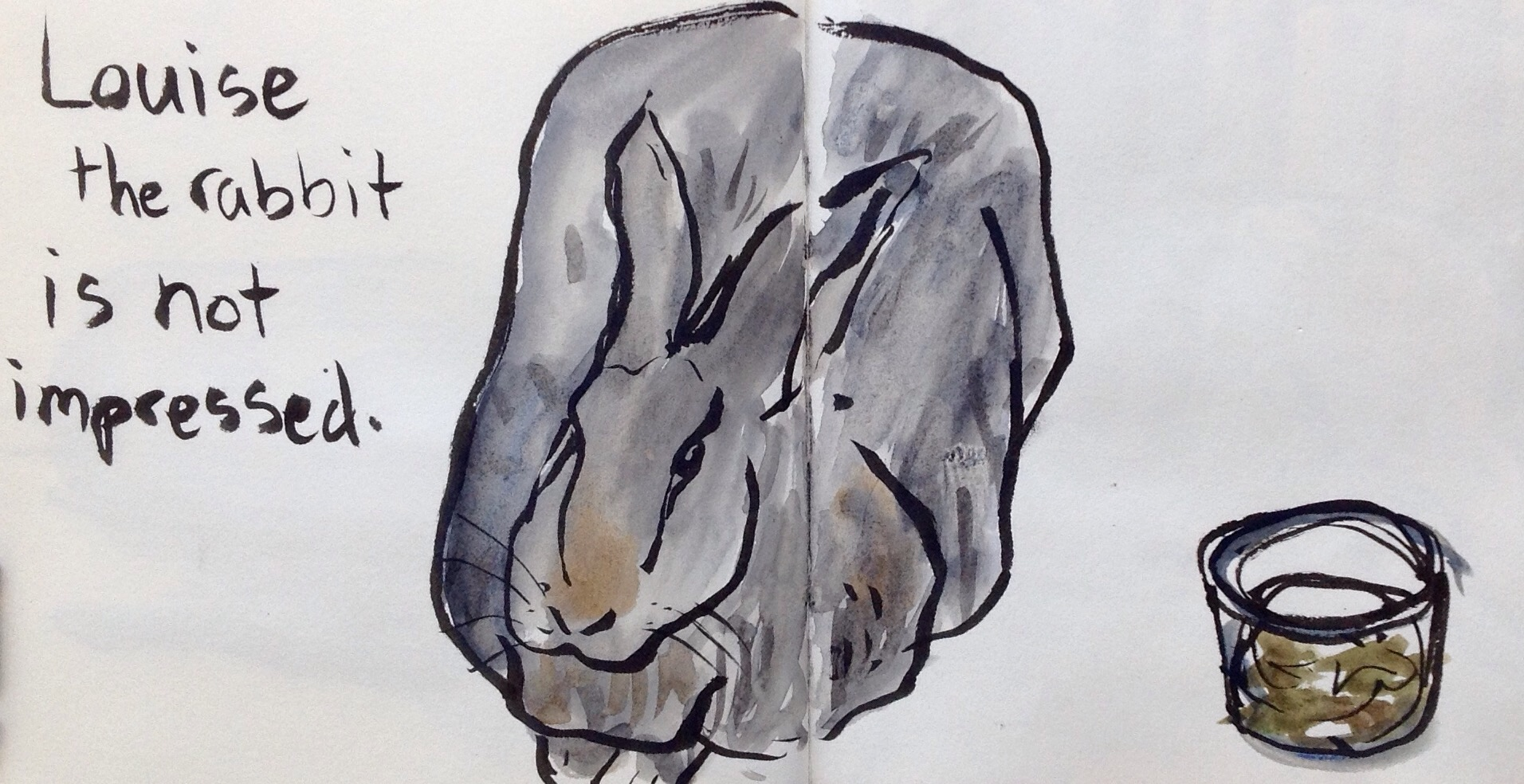 Rabbits are a good animal to sketch at the fair because they are in fairly small cages raised up off the ground. I rested my sketchbook on the edge of their table as I drew.