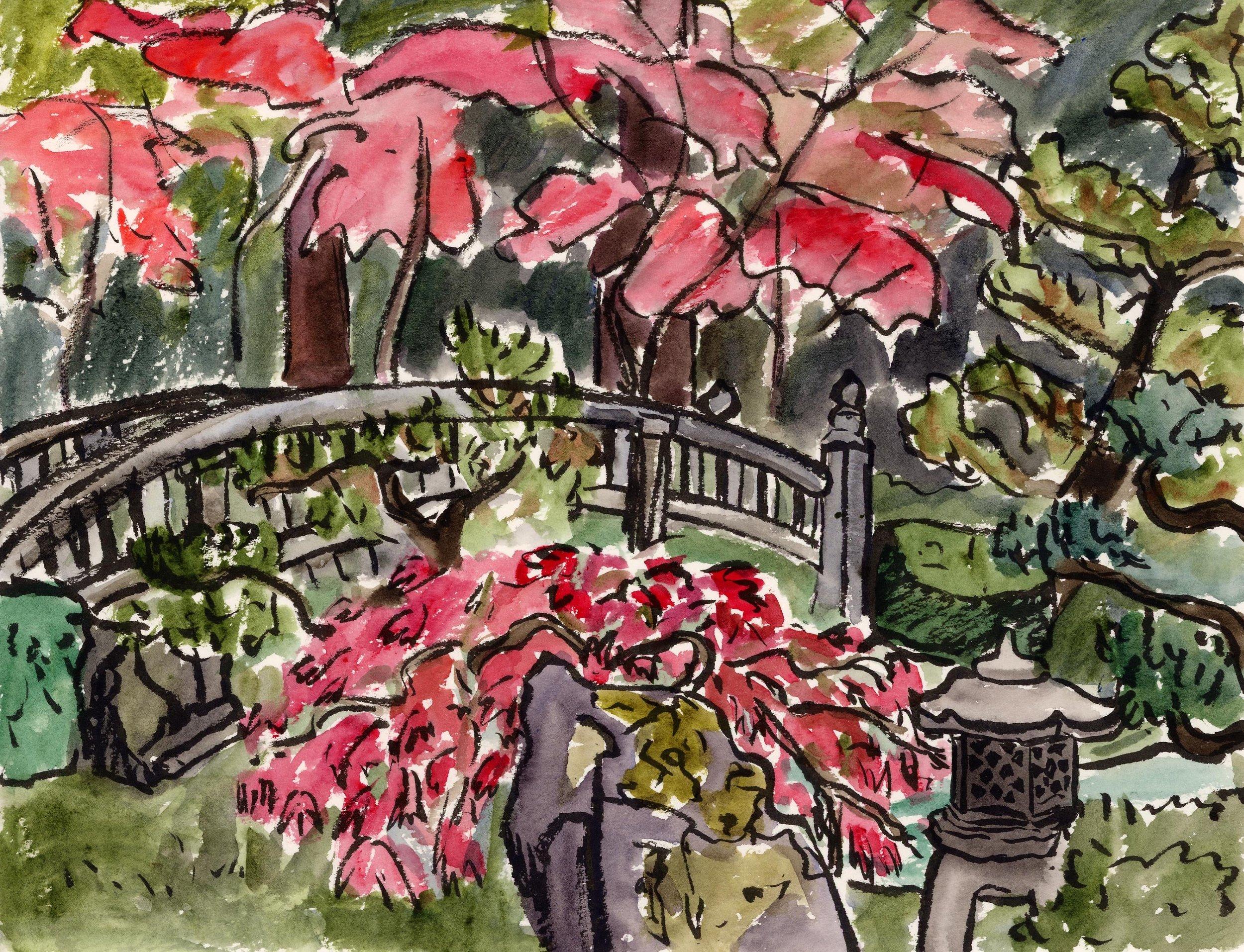 Beautiful fall foliage at the Japanese Gardens.